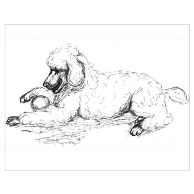 Playful Poodle Poster