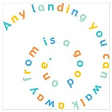Any Landing Poster