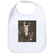 Donkey foal and her mom Bib