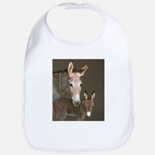 Donkey foal and her mom Bib