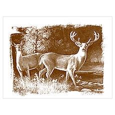 Wildlife Deers Poster