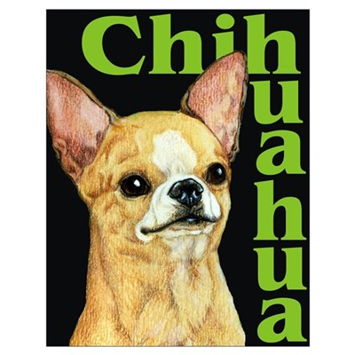 Urban Smooth Chihuahua Poster