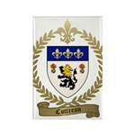 COTTREAU Family Crest Rectangle Magnet (10 pack)