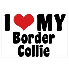 I Love My Border Collie Canvas Art