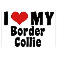 I Love My Border Collie Poster
