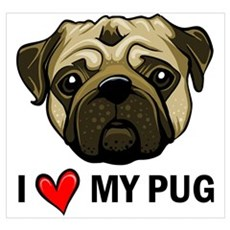I Heart My Pug Poster