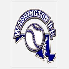 Washington D.C. Baseball