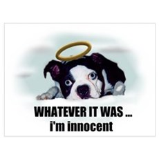 WHATEVER IT WAS I'M INNOCENT Poster
