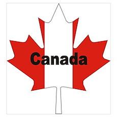 Canada Flag Maple Leaf Poster