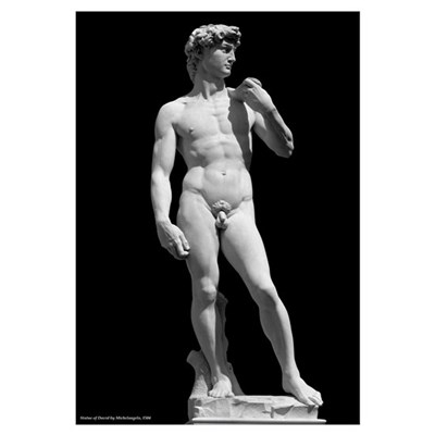Statue of David - Michelangelo Framed Print