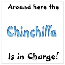Chin In Charge Poster