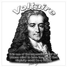 Voiltaire 01 Poster