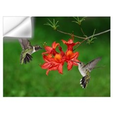 Hummingbird pair Wall Decal
