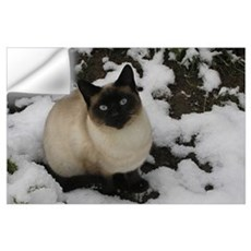Siamese Snow Cat Wall Decal
