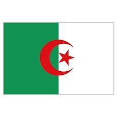 Algerian flag Poster
