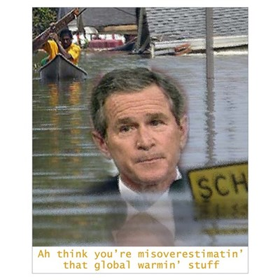 Bush, Floods, and Global Warm Poster