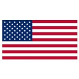 American flag Wrapped Canvas Art