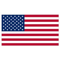 American Flag Canvas Art