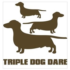 triple dog dare christmas story Poster
