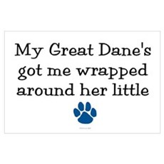 Wrapped Around Her Paw (Great Dane) Poster