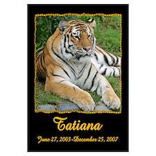 Tatiana the Tiger
