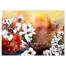 Japanese cherry blossom flowe Poster