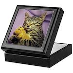 Daisy Sleeping Kitty Cat Kitten Keepsake Box