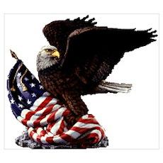 Eagle's America Poster