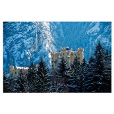 Medieval Castle (Hohenschwang Poster