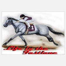 Race Horse, Life in the fastl