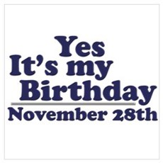 November 28th Birthday Poster