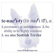 Tenacity--Scottish Terrier Poster