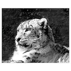 Snow Leopard 2 Poster