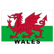 Welsh Flag (labeled) Poster