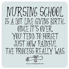 Nursing School like Birth II Poster