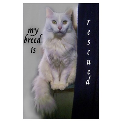 My Breed is Rescued Poster