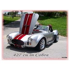 427 cu in Cobra Poster