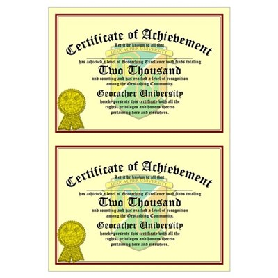Certificate of Achievement - 2000 (Double Canvas Art