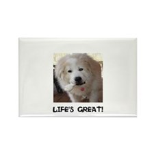 Life's Great Rectangle Magnet (10 pack)