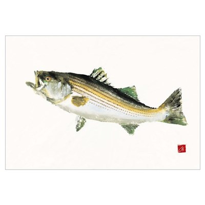 Striped Bass Gyotaku Canvas Art