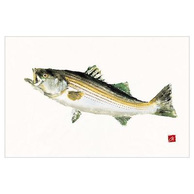 Striped Bass Gyotaku Poster