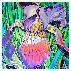 Purple Iris by RD RIccoboni Poster