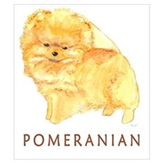 Pomeranian Labeled Poster