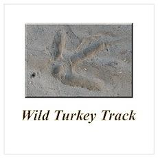 Wild Turkey Track Poster