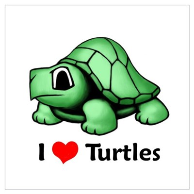 I Love Turtles Poster