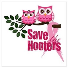 Save the Hooters Canvas Art