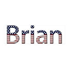 Brian Stars and Stripes 42x14 Wall Peel
