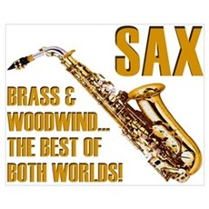 Sax - The Best of Both Worlds Framed Print