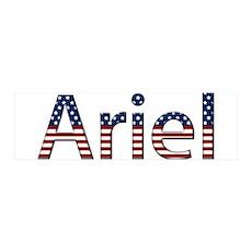 Ariel Stars and Stripes 42x14 Wall Peel