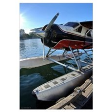 Float Plane (Vertical) Framed Print